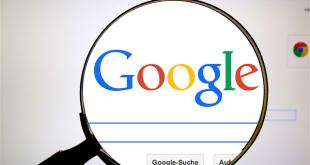 איך למצוא שירותים לוקליים בעזרת Google My Business?