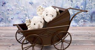 איך בוחרים עגלת תינוקות