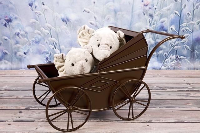 איך לבחור עגלת תינוק | עגלת תינוק מומלצת