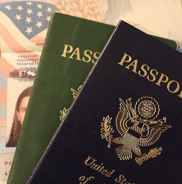 כיסוי לדרכון   כיסוי מעוצב לדרכון